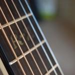 handmade acoustic guitars bucks
